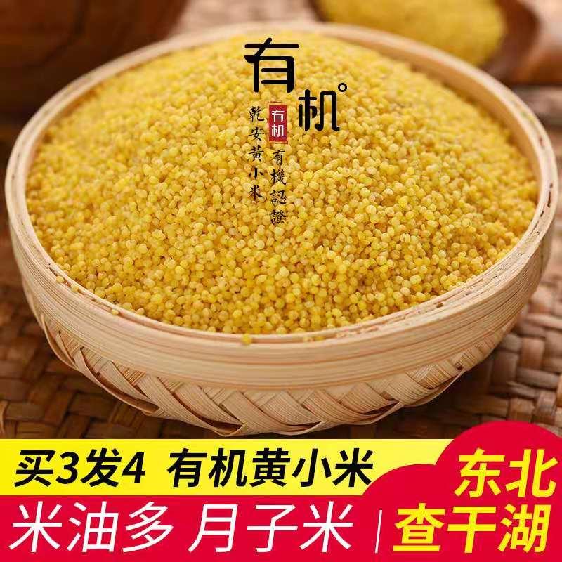 有機小米400 g東北小米粥農家の小黄米脂黄小米乳児補助食を3発買います。
