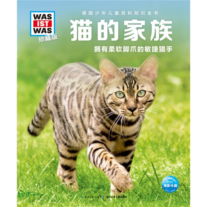 Cats family / what is it (Collection Edition Part 3)