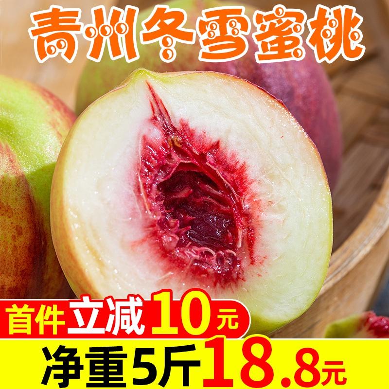 山东青州蜜桃5斤当季桃子新鲜水果冬雪桃离核脆桃小毛桃整箱包邮
