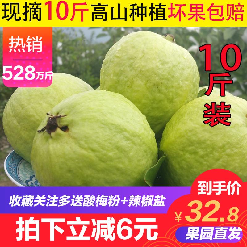 广西高山现摘番石榴芭乐10斤装 新鲜热带水果 清脆香甜