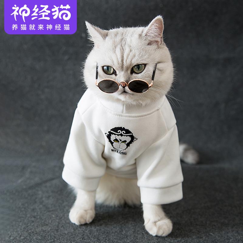 经典抖音同款猫咪衣服防掉毛小奶猫猫秋冬装薄款英短幼猫宠物卫衣