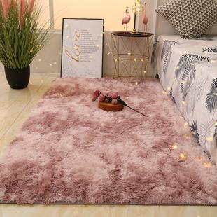 北欧风ins地毯卧室客厅榻榻米满铺可爱少女衣帽间床边长毛毯垫子
