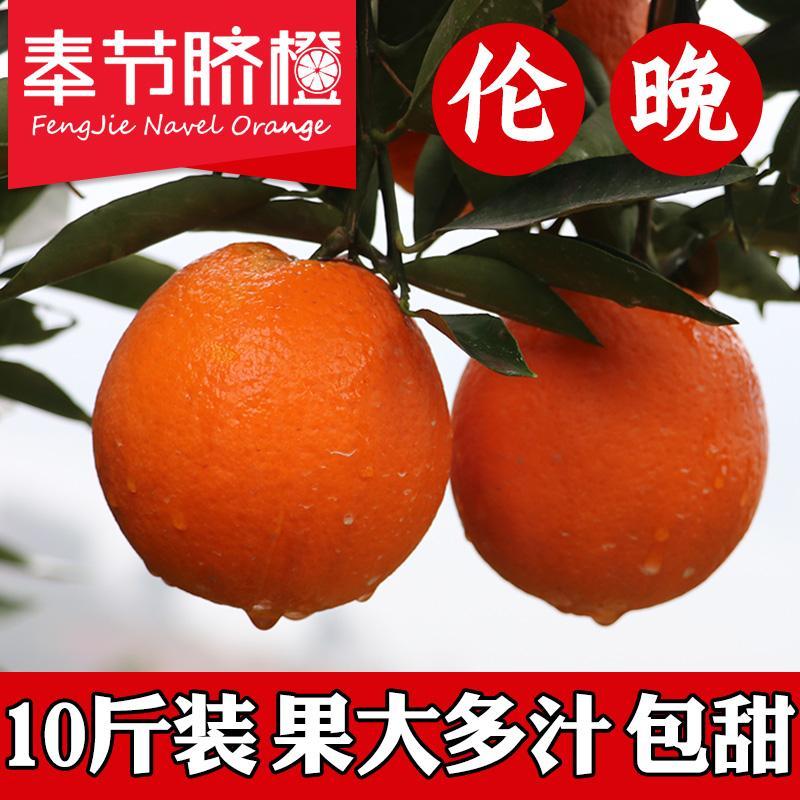 脐橙正宗重庆奉节脐橙伦晚10斤带叶大橙子手剥橙新鲜多汁当季包邮