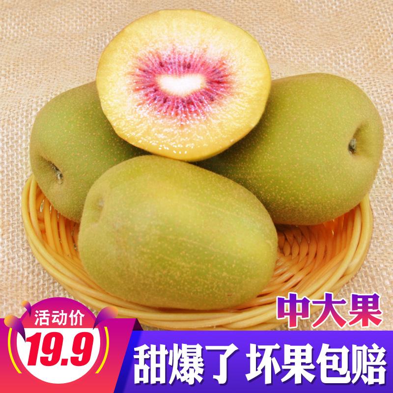 四川蒲江红心猕猴桃当季新鲜水果浦江奇异果包邮非徐香猕猴桃红心