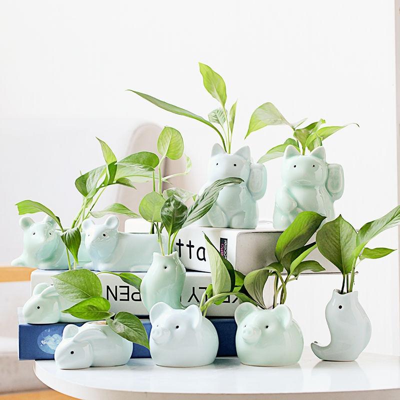 オリジナリティあるロマネスクの生け花水培花瓶の陶磁器の水養デスクトップの可愛いトランペットの飾り物のミニ