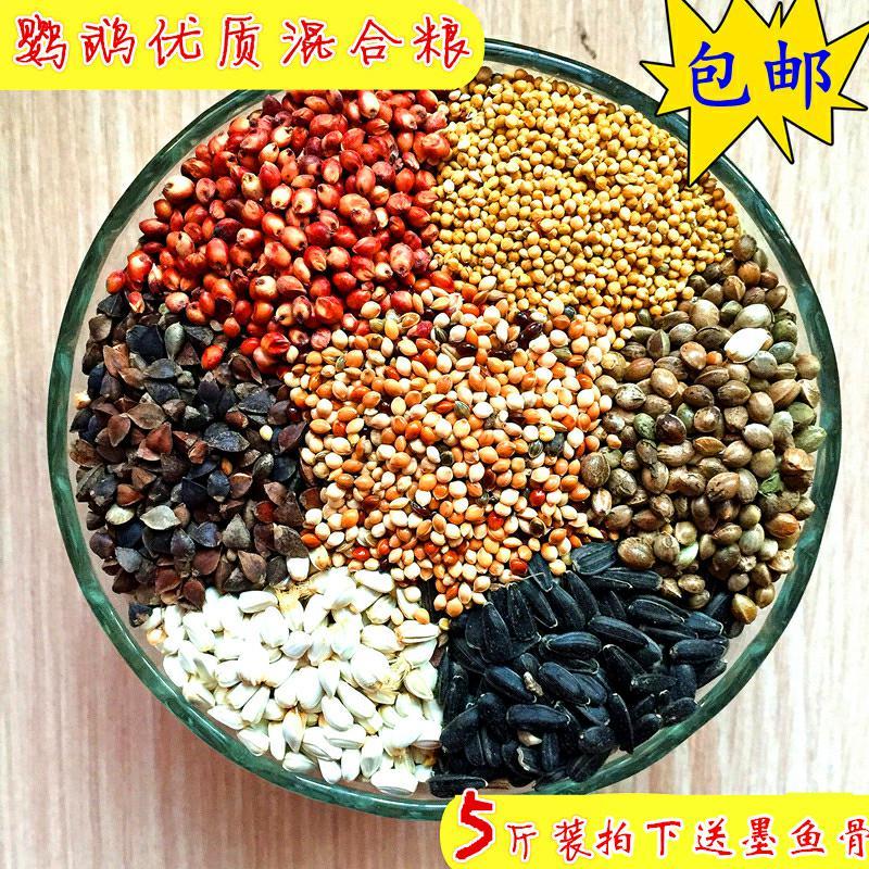 玄鳳のオウムの飼料の混合食糧のトラの皮のボタンの鳥は倉鼠の食糧を食べて殻の小さい米の5色の黍の黄色の谷を持ちます。
