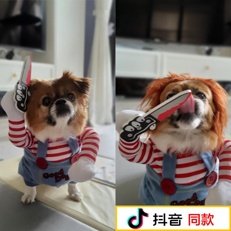 狗狗衣服抖音同款搞笑装可爱的搞怪服饰小猫咪泰迪比熊宠物衣服