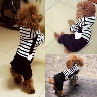 小狗狗衣服比熊夏天小型犬夏装潮牌