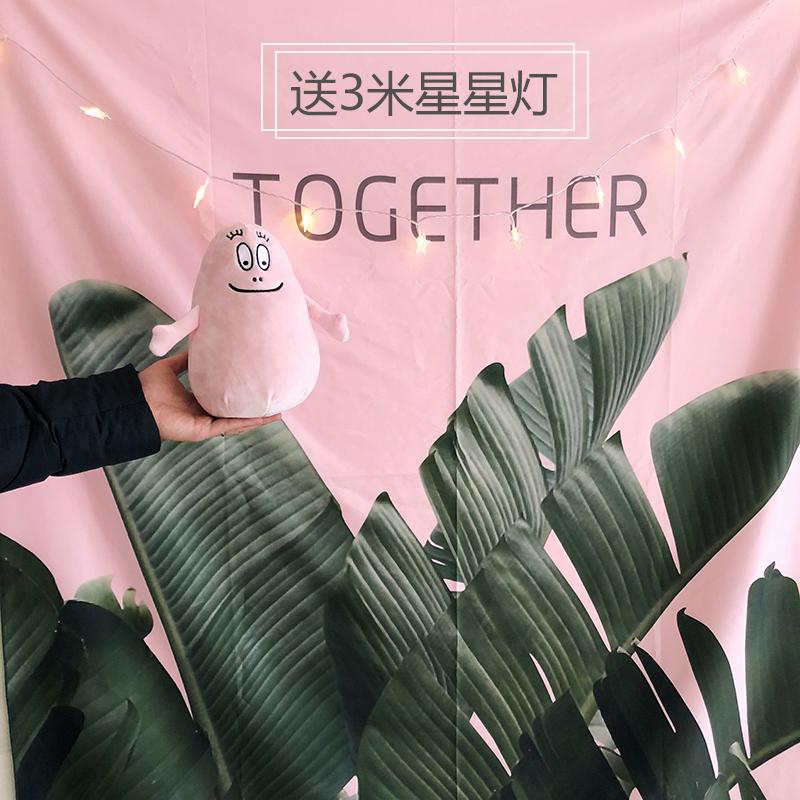 Девушка сердце релиз отражать комната ins ветер розовый зеленый завод вешать ткань мягкий сестра комната шелковистый декоративный ткань фотографировать фон ткань