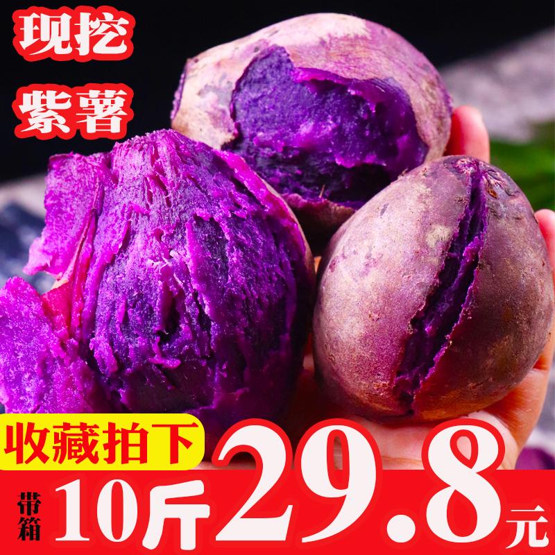 29.90元包邮现挖新鲜紫薯带箱10斤农家香薯糖心板栗红薯沙地小地瓜蜜薯番薯包