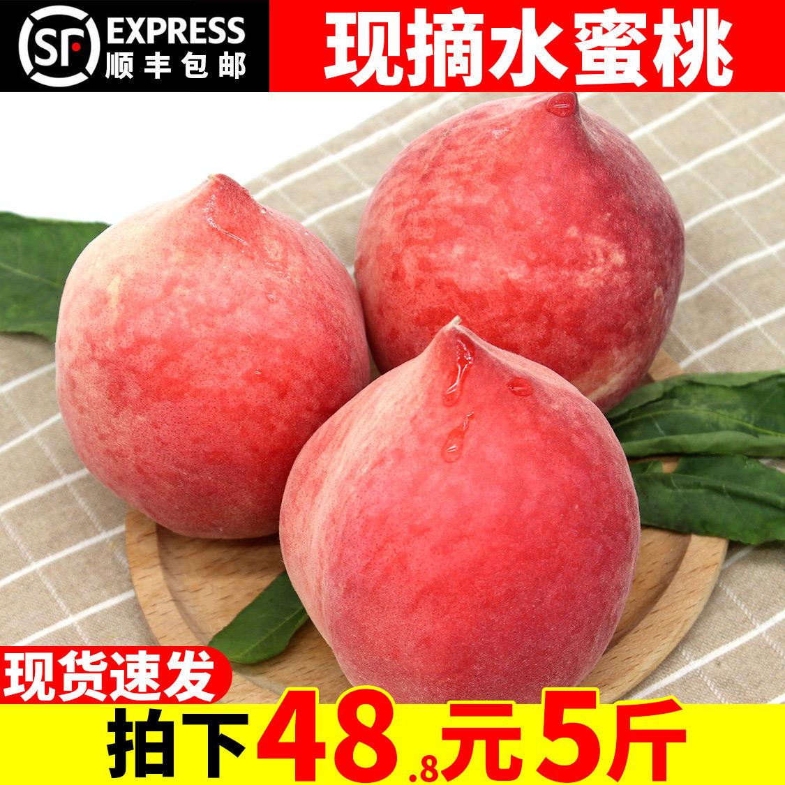 顺丰包邮 现摘水蜜桃新鲜水果包邮当季水果桃子脆桃毛桃5斤硬桃子