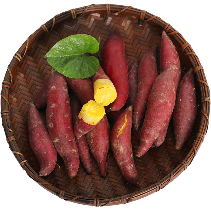 9月现挖新鲜番薯正宗临安天目山小香薯5斤金手指地瓜板栗红薯山芋