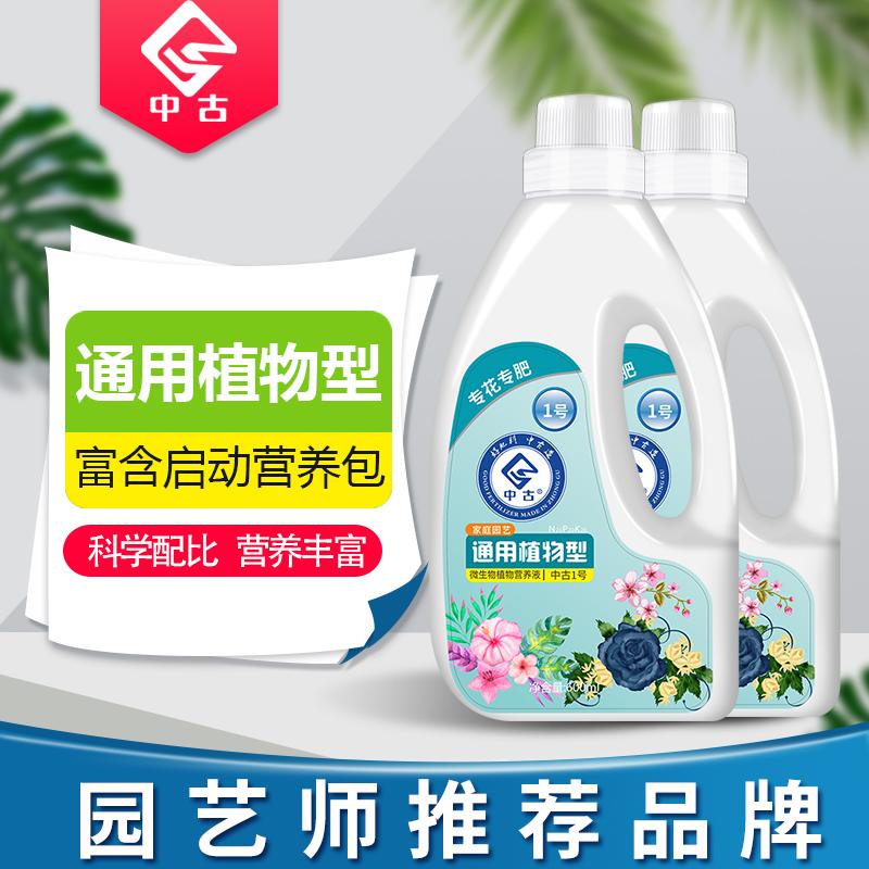 中古栄養液植物通用型の花卉盆栽土水培緑丸富貴竹