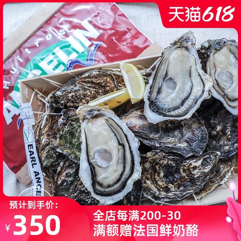 法国空运鲜活安芝莲ancelin n1牡蛎