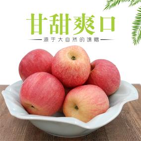 密云新城子富士当季新鲜苹果水果