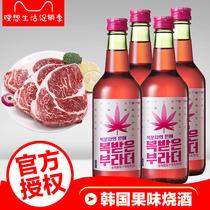 促销直销浙江特产十斤枇杷酒非农家自酿酒女士低度酒专用酒馆特价
