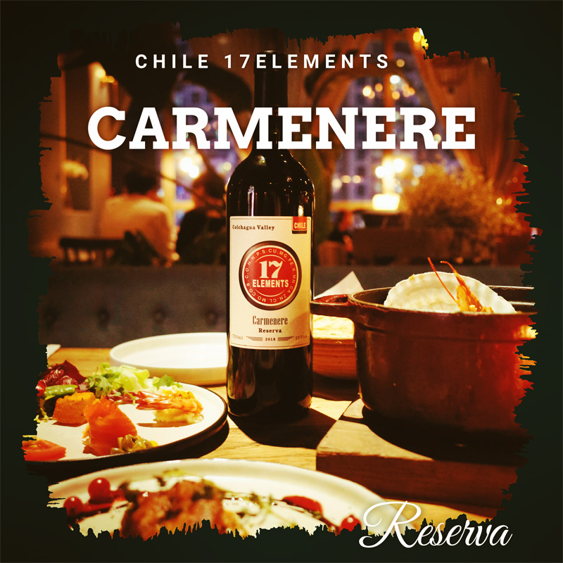 Original bottle imported Chile 17 element aged dry red wine 750ml
