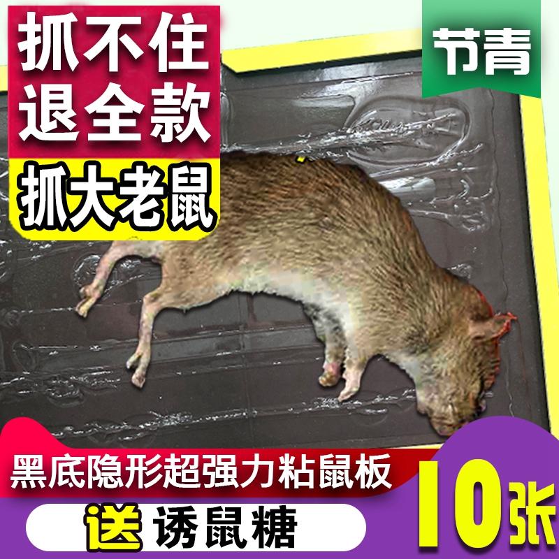 粘鼠板超强力大老鼠贴捕鼠灭驱捉鼠器连续捕鼠器商家