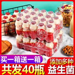 乳酸菌风味酸牛奶整箱特价小瓶酸奶