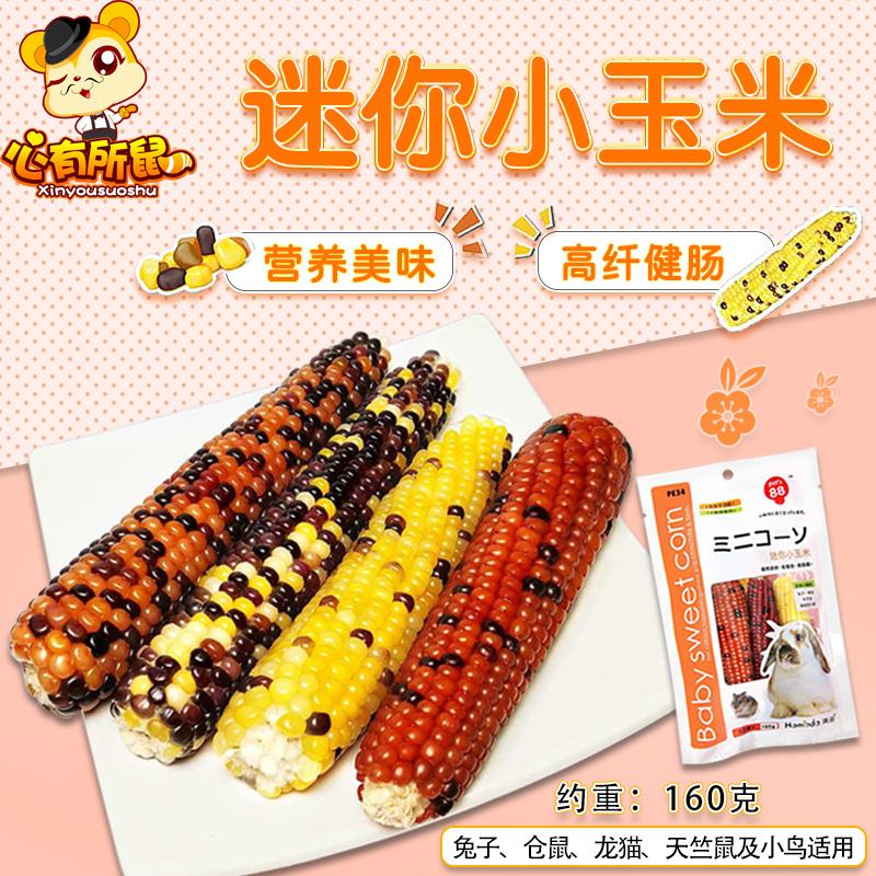 滨田迷你小玉米160g零食兔子粮食