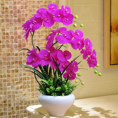 蝴蝶兰仿真花摆件套装花瓶盆栽绢花塑料假花家居客厅花卉装饰摆设