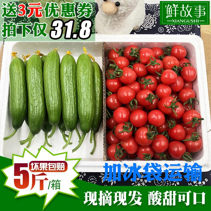 鲜故事 寿光圣女果小黄瓜5斤混装小番茄樱桃西红柿水果黄瓜小柿子