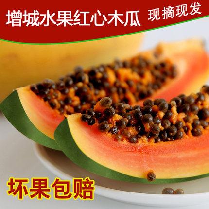广东树上熟红心木瓜新鲜水果特产夏威夷冰糖牛奶青木瓜8斤包邮