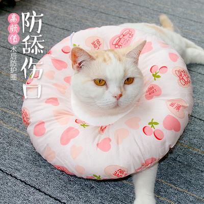 伊丽莎白圈猫正品折扣