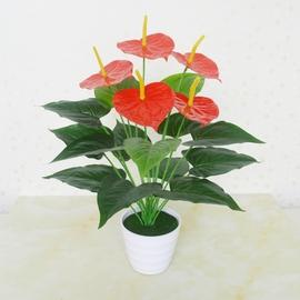 仿真植物红掌假花束客厅室内装饰盆栽摆设塑料绿植假花小盆景摆件图片