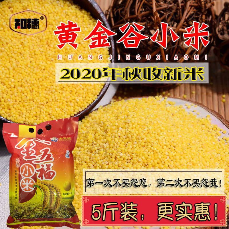 Autumn harvest in 2020 new rice, moon, yellow millet, coarse grain, rice fat, millet porridge