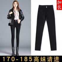 加长版打底裤女加绒170适合高个子女生穿搭超长裤175气质女装店铺