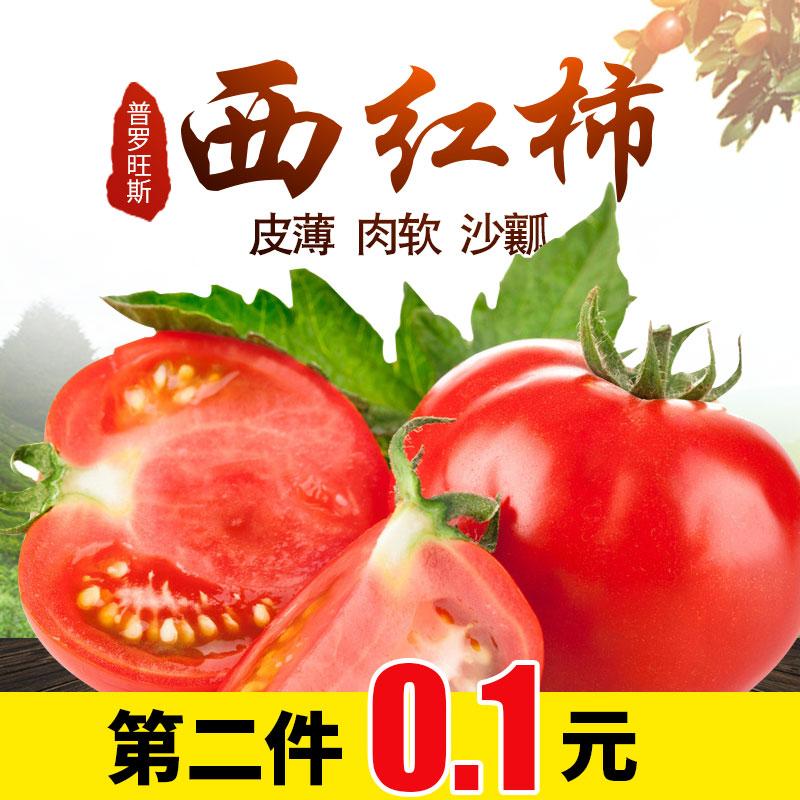 普罗旺斯西红柿山东沙瓤新鲜番茄自然蔬菜洋柿子第二件0.1元包邮