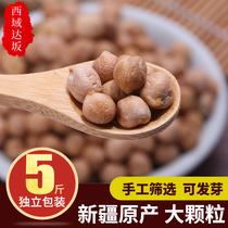 5袋新疆特产生鹰嘴豆5斤2019新豆杂粮打特级豆泥豆浆鹰嘴豆500g