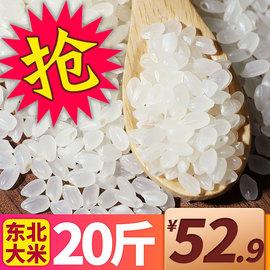 大米10kg大包装新米圆粒珍珠米粳米秋田小町包邮餐饮东北大米20斤