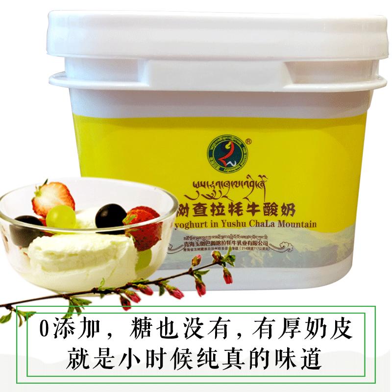 青海特产纯牦牛奶酸奶0添加酸奶全脂0糖健身酸奶自制素食早餐食品
