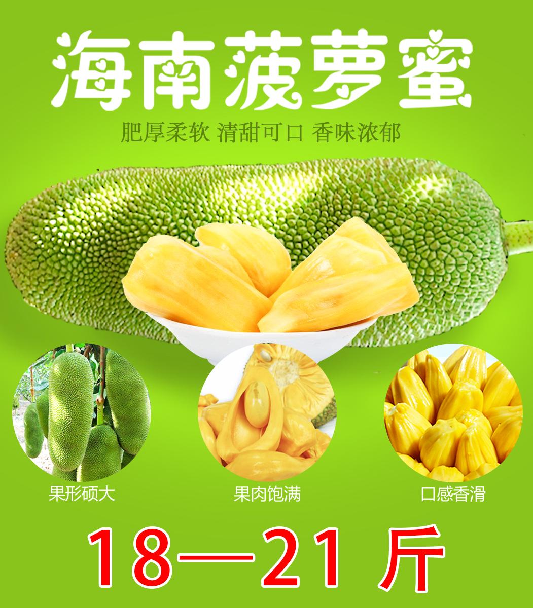 18-21斤海南菠萝蜜新鲜波罗蜜干苞老树木菠萝蜜