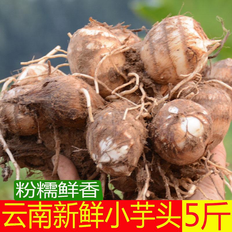 19年新鲜毛芋头5斤云南特产蔬菜农家自种现挖小笨毛芋头芋艿粉糯