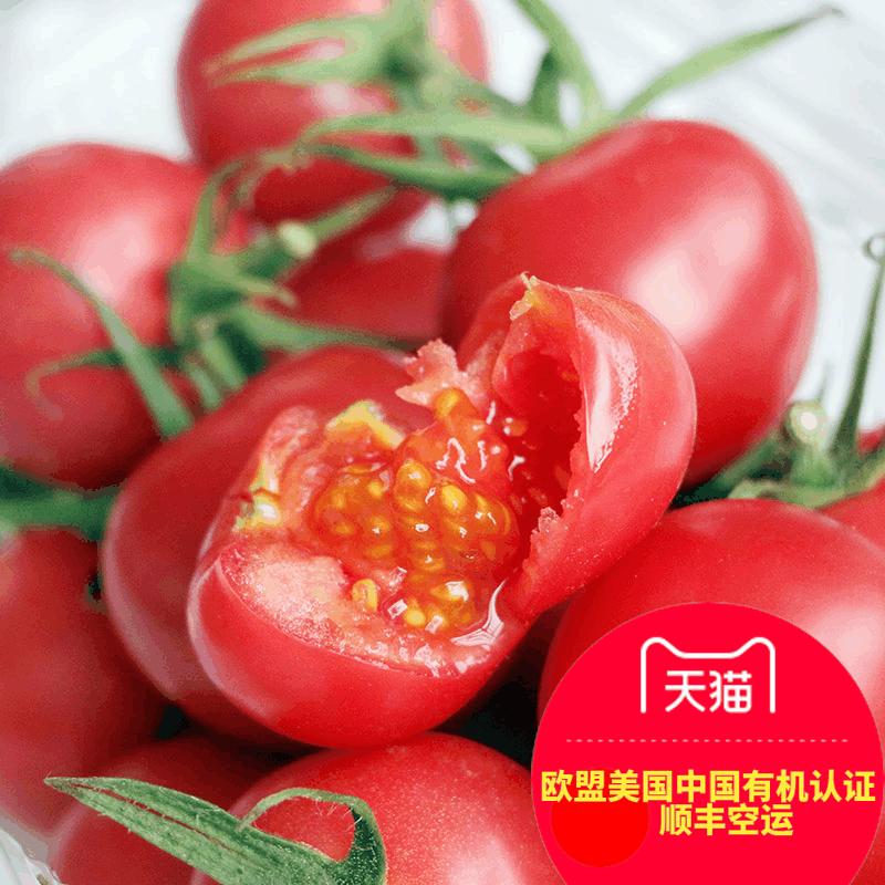 有机汇 有机小番茄圣女果沙拉小西红柿500g