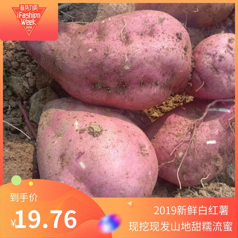 11月29日最新优惠河南板薯5斤白心香薯现挖新鲜红薯