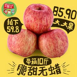 新鲜苹果水果陕西苹果脆甜当季红苹果净重9斤新鲜大苹果无蜡脆甜