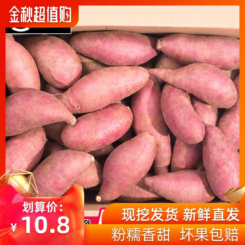 现挖新鲜农家自种稀瓤大5斤10地瓜