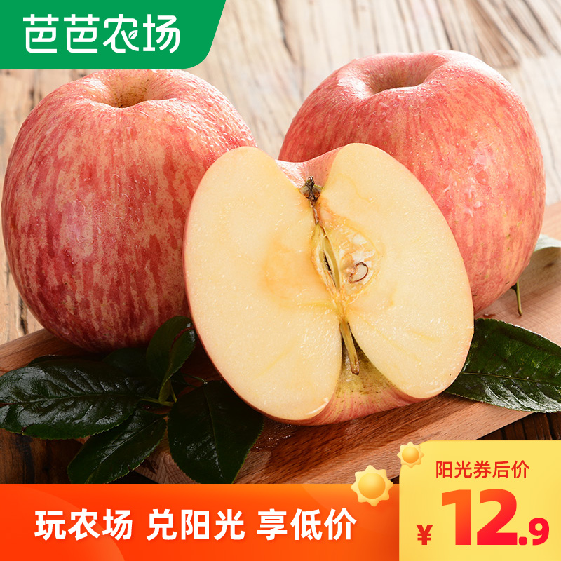 Five Jin package of Red Fuji apple from Yantai