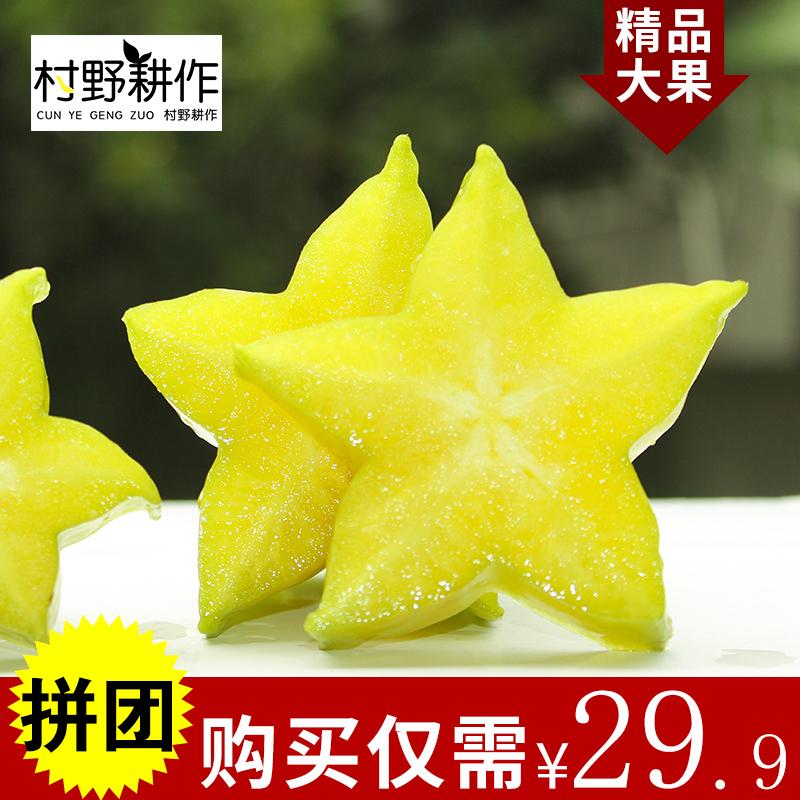 农家特产果园现摘大果甜杨桃当季热带孕妇水果包邮洋桃新鲜5斤