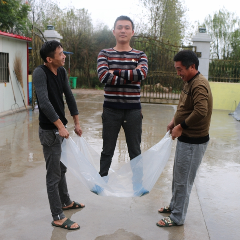 Бесплатная доставка прозрачный пластик ткань пластик фильм фильм в мембрана сгущаться мембрана нет падения большой фильмы пластик мембрана