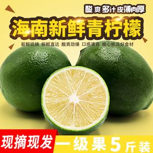 果品康 海南一级青柠檬 新鲜水果 5斤 券后12.9元包邮 (15.9-3)