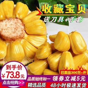 领5元券购买16-20斤现发新鲜黄肉菠萝蜜水果包邮海南三亚非红肉菠萝蜜大树菠