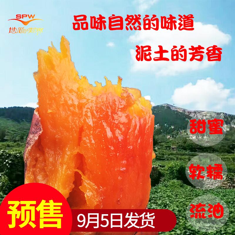 山东新鲜富硒蜜薯甜软糯烟薯25番薯红薯山芋地瓜收蜜糖心五斤包邮