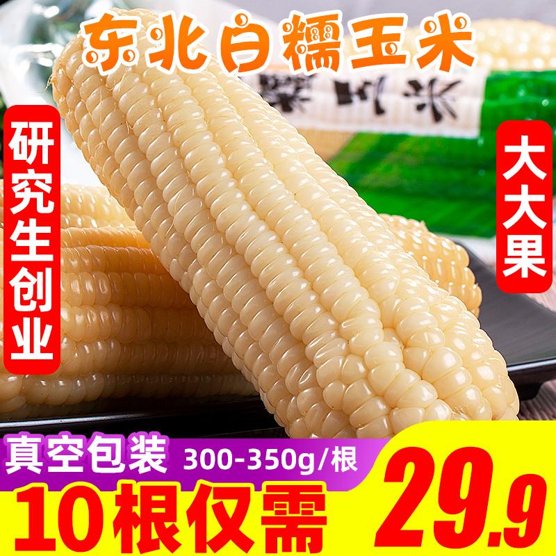 东北白糯玉米10根现摘新鲜包邮真空水果甜玉米笋即食整箱当季蔬菜