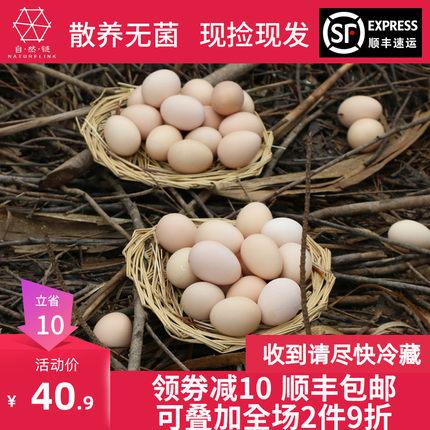 自然鏈正宗溯源清遠雞初生土雞蛋