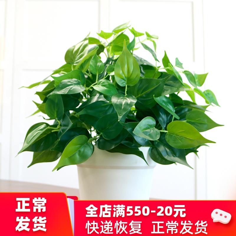 仿真绿萝盆栽室内仿真植物塑料小盆栽装饰绿植仿真花草假植物绿萝